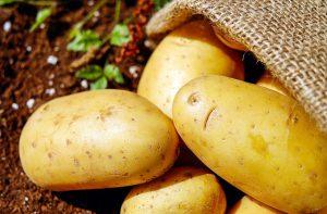 ジャガイモの抗がん作用