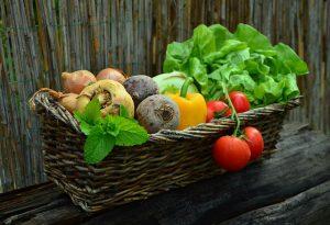 ガンの原因は野菜不足