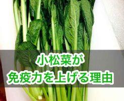 小松菜がん予防