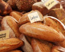 糖質の代謝を学ぶ