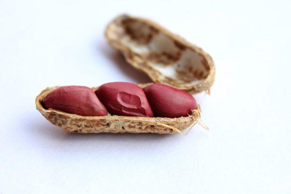 ピーナッツで認知症の予防・改善